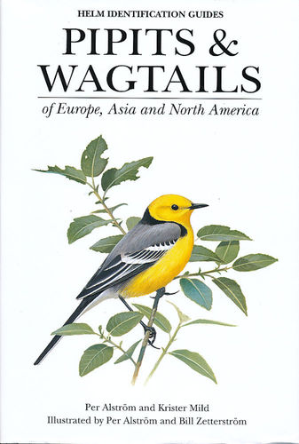 Alström, Mild, Zetterström : Pipits and Wagtails : of Europe, Asia and North America