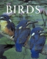 Forshaw : Encyclopedia of Birds :