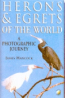 Hancock : Herons and Egrets of the World : A Photographic Guide