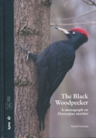 Gorman : The Black Woodpecker : A monograph on Dryocopus martius