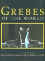 Ogilvie, Illustr: Rose : Grebes of the World :