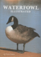 Veasey : Waterfowl Illustrated :