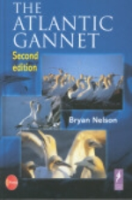 Nelson : The Atlantic Gannet :