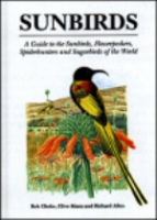 Cheke, Mann : Sunbirds : A Guide to the Sunbirds, Flowerpeckers, Spiderhunters and Sugarbirds of the World