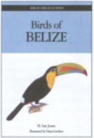Jones : Field Guide to the Birds of Belize :