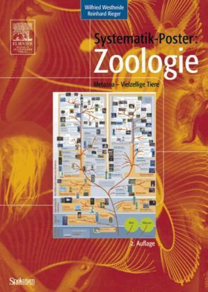 Westheide, Rieger: Systematik-Poster: Zoologie : Metazoa - Vielzellige Tiere
