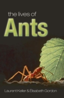Keller, Gordon : The Lives of Ants :