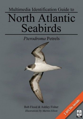 Flood, Fisher: Multimedia Identification Guide to North Atlantic Seabirds