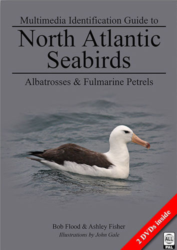 Flood et al : Multimedia Identification Guide to North Atlantic Seabirds Vol. 3 - Albatrosses