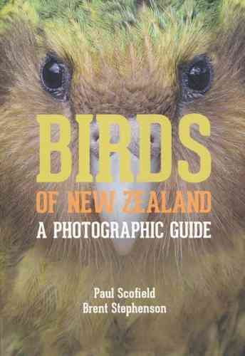 Scofield, Stephenson: Birds of New Zealand - A Photographic Guide