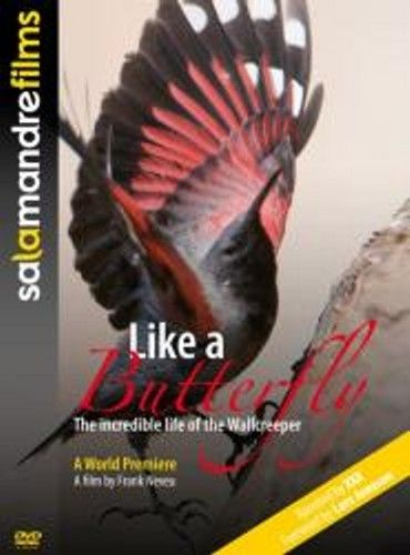 Neveu: Like a Butterfly - The incredible life of the Wallcreeper