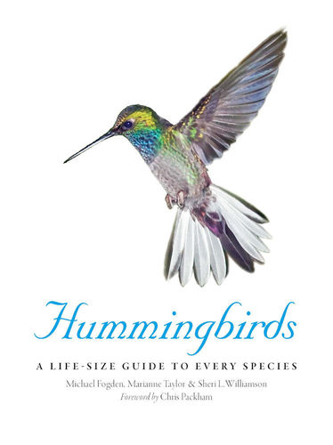 Fogden, Taylor: Hummingbirds - A Life-Size Guide to Every Species