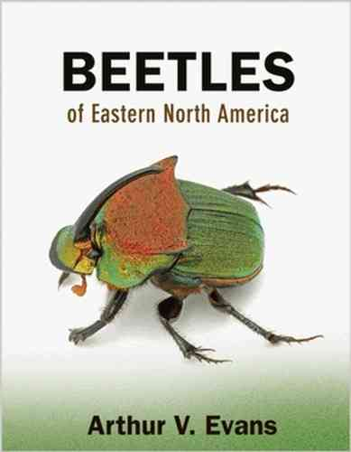 Evans: Beetles of Eastern North America