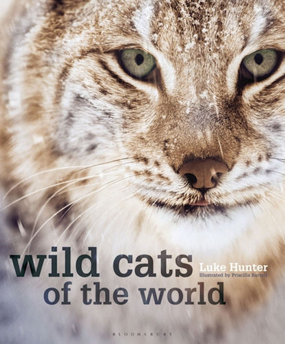 Hunter: Wild Cats of the World