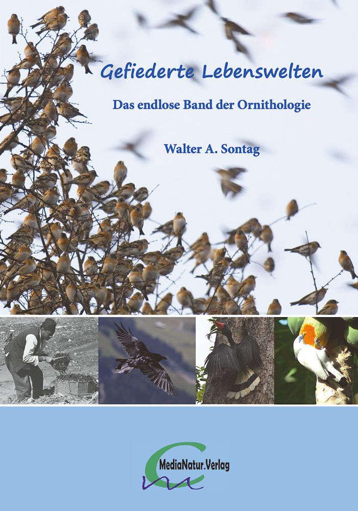 Sontag: Gefiederte Lebenswelten - Das endlose Band der Ornithologie