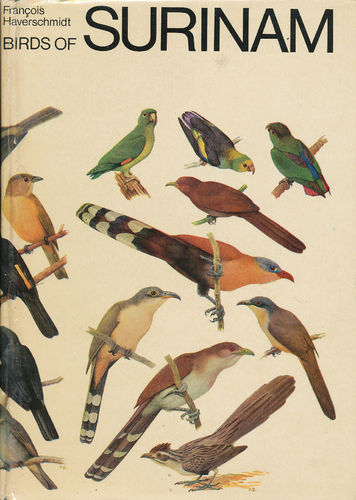 Haverschmidt: Birds of Surinam