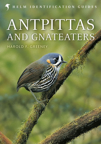 Greeney, Beadle: Antpittas and Gnateaters - Helm Identification Guide