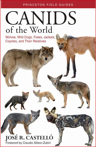 Castelló: Canids of the World - Wolves, Wild Dogs, Foxes, Jackals, Coyotes, and Their Relatives