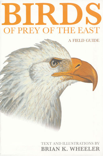Wheeler: Birds of Prey of the East - A Field Guide