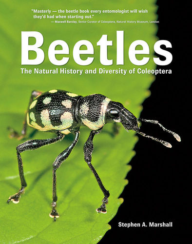 Marshall: Beetles The Natural History and Diversity of Coleoptera