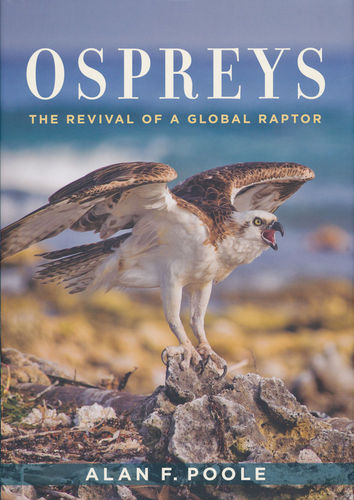 Poole: Ospreys - The Revival of a Global Raptor