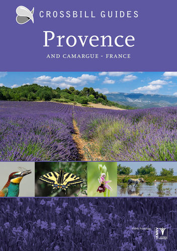 Hilbers: Provence and Camargue -  France  (Crossbill Guide)
